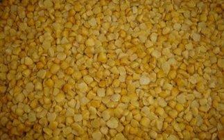 Φάβα: πλούσια πηγή φυτικών πρωτεϊνών