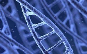4CD3EC1B21B3B4F34DFFA3290E7581C5.jpg