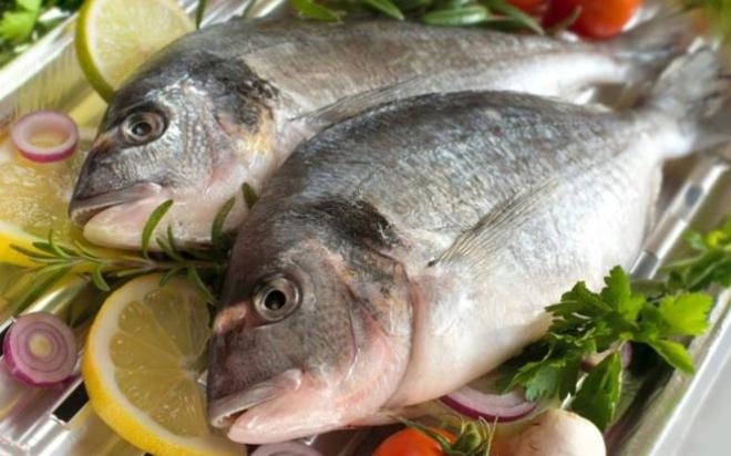 fish.medium.jpg