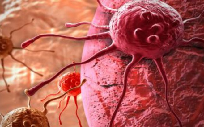 cancer.medium.jpg
