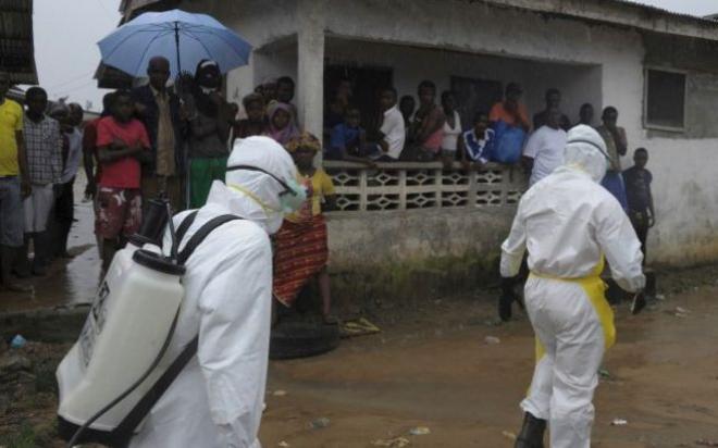 embola.medium.jpg
