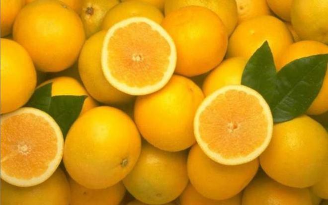 portokalia.medium.jpg