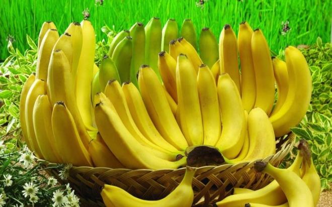 Absolute-Hit-Morning-Banana-Diet.jpg
